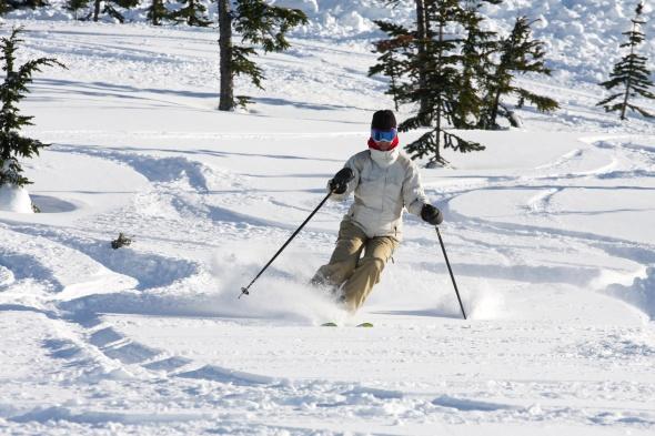 Alpine woman skier